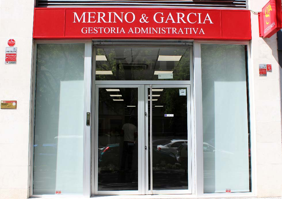 Frontal_Merino