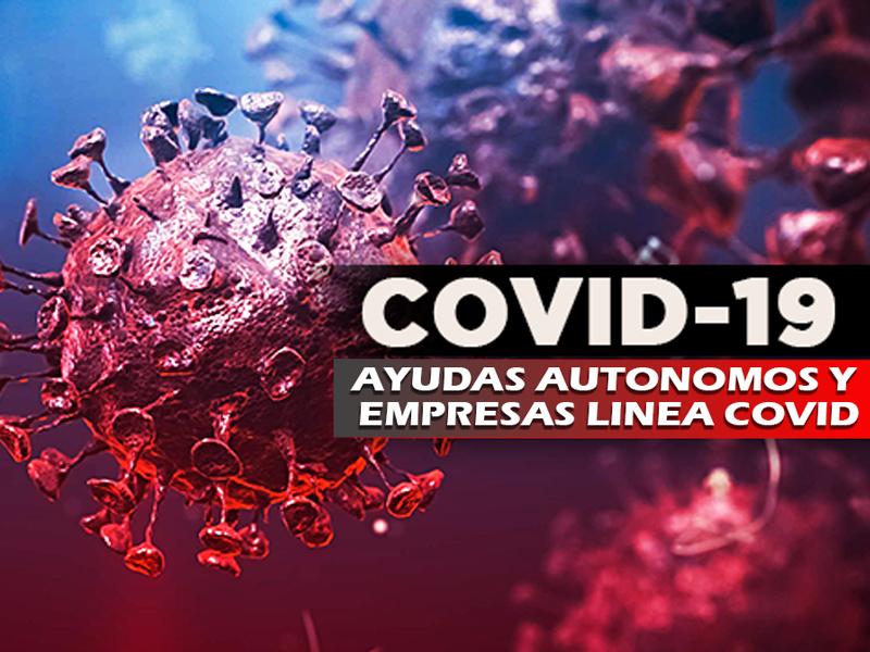 AYUDA COMUNIDAD DE MADRID PARA AUTONOMOS Y EMPRESAS LINEA COVID